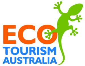 Whitsundays Crocodile Safari